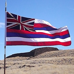 Hawaii's state flag