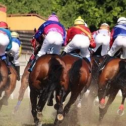 New Jersey Race Tracks Want Online Gambling